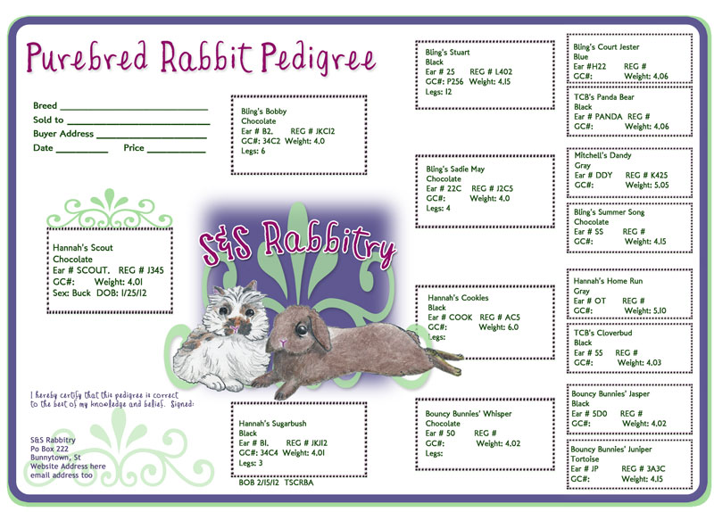 Rabbit Pedigree Template | Rabbit Pedigrees Show Rabbit Information