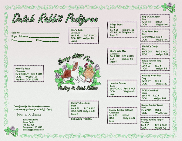 Custom dutch rabbit pedigree design